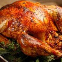 Fresh Turkeys For Sale