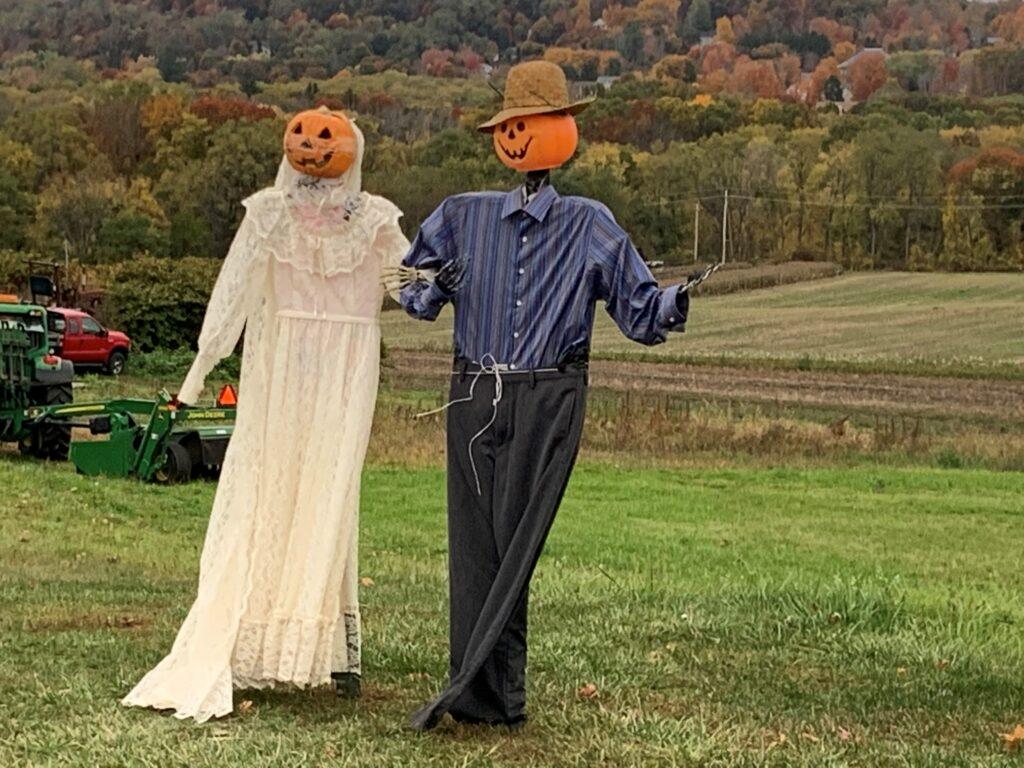 Pumpkin Bride and Groom